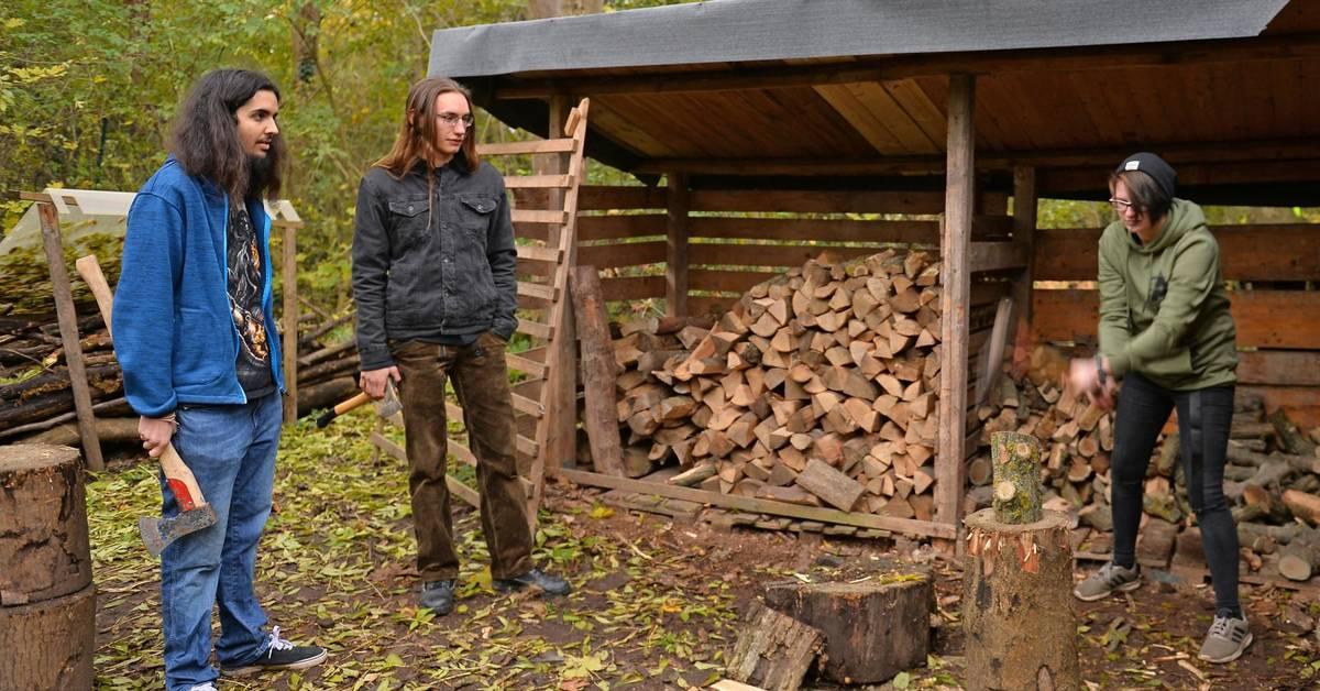 Holz hacken und Pflanzen pflegen in Worms - Bürstädter Zeitung