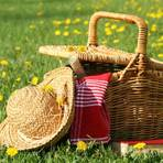 Ein Picknickkorb auf einer Frühlingswiese. Archivfoto: Fotolia/Sandra Cunningham