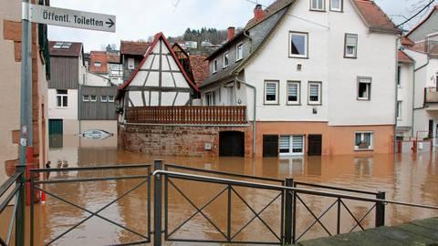Das Bürgerforum Steinernes Haus hilft weiterhin den Menschen, die in der Altstadt, der Neustadt und der Vorstadt vom Hochwasser betroffen sind. Foto: Leo