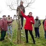 Försterin Nadine Kahl (roter Anorak) erklärt Mitgliedern des Gartenbauvereins den Schnitt eines Apfelbaums. Foto: Ulrike Bernauer