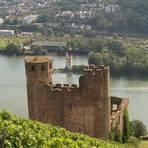 Blick aus den Weinbergen auf die Ruine Ehrenfels und den Mäuseturm im Rhein. Foto: Wolfgang Blum