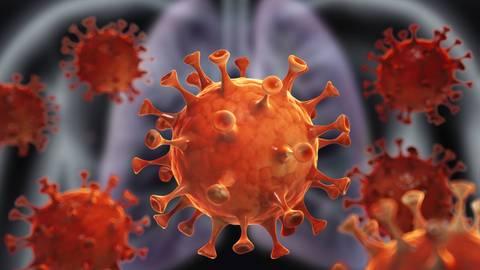 Coronavirus Foto: peterschreiber.media-stock.adobe