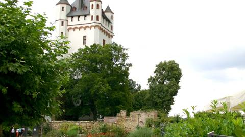 Kurfürstliche Burg Eltville. Foto: Daniel Holzer