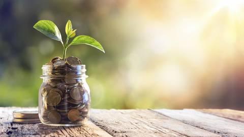 Der Grundpreis für ein grünes Girokonto ist bei Spezialbanken im Schnitt höher als bei konventionellen Instituten. Foto: dpa