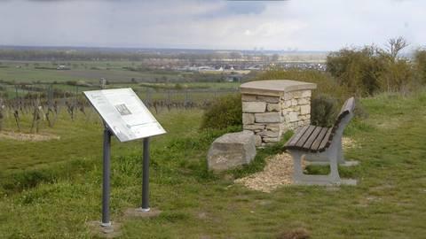 Auf dem Lutherweg bieten sich den Wanderern auch Panoramablicke – wie hier bei Alsheim. Foto: VG-Verwaltung Eich