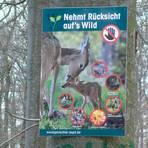 Die Jäger rufen zu Rücksichtnahme und zum Einhalten des Bike-Verbots auf. Foto: Erich Frankenberg