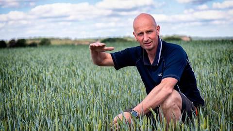 Am deutlichsten ist die Dürre derzeit am Weizen zu erkennen. Mit seiner rechten Hand zeigt Volker Lein, wie hoch das Getreide normalerweise Ende Mai sein sollte. Foto: Dickel
