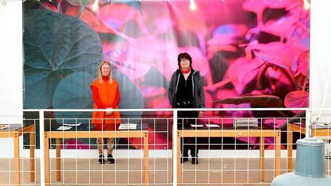 Katja Ebert-Krüdener (rechts) und Line Krom widmen sich in ihrer Ausstellung der Pflanzenwelt.  Fotos: Schultz