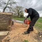 Mit der Kettensäge schnitzt Künstler Christoph Peez aus dem Stamm einer über 300 Jahre alten Eiche eine Bienen-Figur. Foto: VF/Marc Schüler