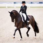 Vorläufig kann Dorothee Schneider ihre Olympia-Pferde, im Bild auf Showtime bei der EM 2019 in Rotterdam, nicht persönlich reiten. In Form gehalten werden sie trotzdem. Das kann die Gestütsbesitzerin auch mit gebrochenem Schlüsselbein managen. Archivfoto:  dpa