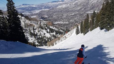 Die Baumgrenze fängt am Aspen Mountain erst bei rund 3800 Metern an, deswegen kann man hier abseits der Pisten durch den Wald fahren. Foto: Julia Krentosch