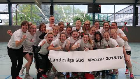 Meisterhafte Mannschaft: Die Handballerinnen der TGB Darmstadt feiern den Aufstieg nach dem klaren Sieg gegen die FSG Dieburg/Groß-Zimmern. Foto: Thomas Zöller
