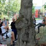 Die Jugendlichen können sich auch als Baumpfleger ausprobieren. Foto: wita/Martin Fromme