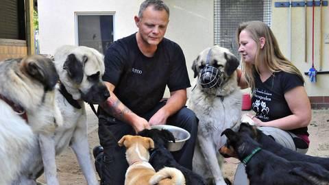 Tierheimleiterin Melanie Weingart und ihr Stellvertreter Thomas Geyer haben mit den Vierbeinern jeder Menge zu tun. Foto: Thomas Schmidt