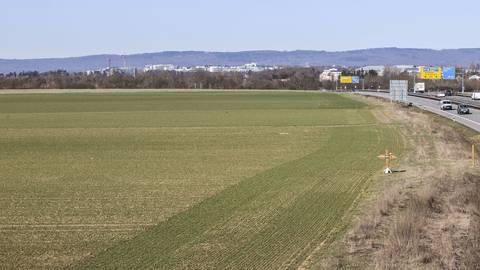 Wo heute noch Felder bewirtschaftet werden, sollen bald Wohnungen und BKA-Gebäude entstehen. Foto: René Vigneron