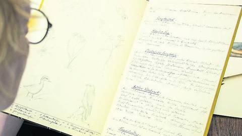 Kürzlich bekam das Museum dieses Unikat geschenkt. Die Zeichnungen und Exkursionsnotizen hat der ehemalige Leiter der Naturkundlichen Sammlungen, Fritz Neubaur, in den Nachkriegsjahren für einen Freund gemalt und geschrieben. Foto: Landesmuseum/Bernd Fickert