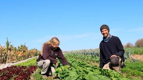 Frank Lusche ist seit 2018 gemeinsam mit Lebensgefährtin Heike Vollmer beim Trägerverein der Solawi fest als Gärtner angestellt. Foto: Frühbis