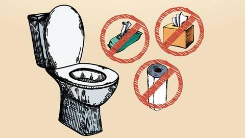 Küchenrollen, feuchtes Toilettenpapier und Taschentücher - alles reißfestes Papier, das sich im Wasser nicht auflöst und ein Problem für die Kläranlage ist.  Fotos: arkadiwna, Marina, rueffelpix - stock.adobe; Montage: vrm/ap
