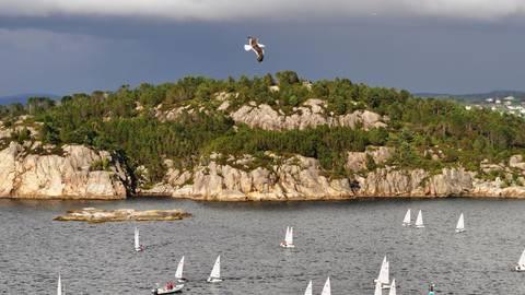 Die Küste bei Stavanger ist nicht nur bei Badegästen, sondern vor allem auch bei Windsurfern sehr beliebt. Foto: Mona Contzen