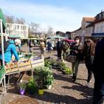 Der Wochenmarkt in Dieburg zieht auch in Corona-Zeiten viele Menschen an. Foto: Michael Prasch