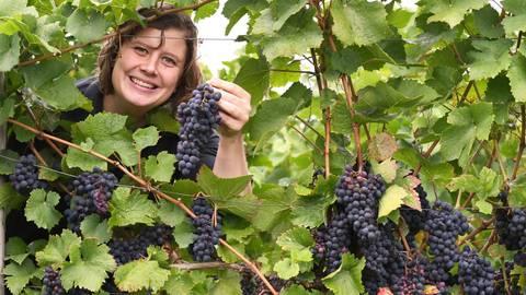 Die Heppenheimer Winzerin Barbara Amthor arbeitet erfolgreich mit der Qualität der Weine und des Marketings. Foto: Dirk Zengel