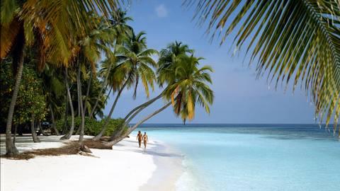 Für viele Ziele wie hier die Malediven wurden Reisewarnungen ausgesprochen. Viele Veranstalter und Touristen kümmert das aber nicht (mehr). Hier muss unbedingt gegengesteuert werden, meint Reiserechtsexperte Ernst Führich. Foto: dpa