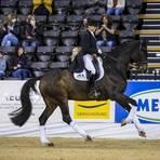 Faustus, hier bei einem Wettbewerb in Oldenburg 2020, ist eins von drei Pferden, mit denen sich die Framersheimerin Dorothee Schneider zum dritten Mal in Folge für Olympische Spiele qualifizieren könnte. Foto: imago-Sportfoto