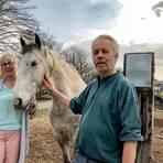 Michael Stumm geht regelmäßig mit Pferd Duende und Betreuerin Daniela Denscheilmann in Appenheim spazieren, um mit seiner bipolaren Störung besser umgehen zu können. Foto: Helena Walheim