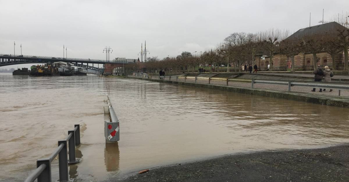 Hochwasser Pegel Mainz
