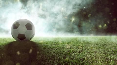 Bald rollt der Ball wieder.  Foto: Adobe Stock - lassedesignen