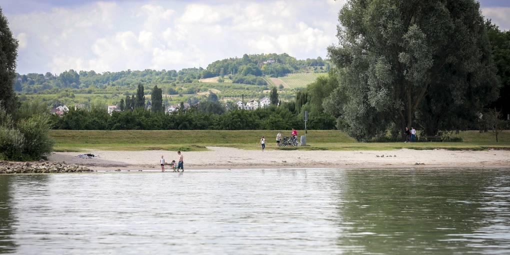 Badeunfall Rhein