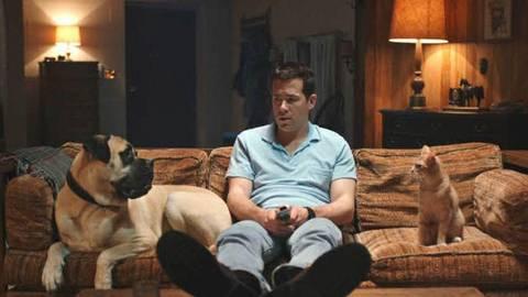 Sein Hund meint es gut mit Jerry (Ryan Reynolds), sein Kater aber redet ihm irres Zeug ein. Foto: Ascot Elite
