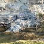 Ein Gesteinsrutsch hat sich in dieser Woche beim Erdbach-Einschlupf unweit des Erbacher Sportparks ereignet. Etwa zwei Kubikmeter Material sind aus der Kalksteinwand gebrochen und in das Bächlein gefallen. Foto: Dirk Zengel
