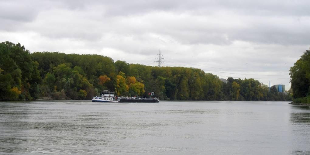 Binnenschiff fährt sich bei Mainz auf dem Rhein fest - Allgemeine Zeitung