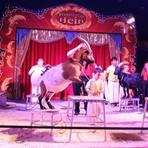 """Manege frei für die Grebenauer Grundschüler: Im Zirkuszelt ist was los, zum einen die Ziegendompteuere, Fakire (Foto oben rechts), zum anderen die """"schwebenden Männer"""" aus dem Publikum. Foto: Schlitt"""