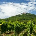 Inmitten der Rebenhügel liegt das Hambacher Schloss auf dem Schlossberg. Foto: Ketz/Rheinland Pfalz Tourismus GmbH