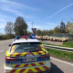 Für eine Straßensperre, damit die Schafe die Straße überqueren konnten, sorgte die Polizei. Foto: Polizei Bad Kreuznach