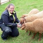 Eyleen Essers arbeitet ehrenamtlich als Tierpflegerin auf der Landesgartenschau und versorgt täglich Schafe, Hühner, ein Rind und zwei Kälber sowie Alpakas. Foto: wita/Martin Fromme