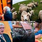 Die Bilder zeigen Fotos zu den Artikeln, die in der vergangenen Woche auf mittelhessen.de besonders intensiv geklickt wurden.