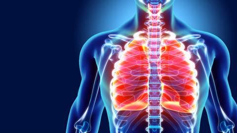 """""""Erstaunlicherweise liegen die Lungenerkrankungen bei den Risikofaktoren eher hinten"""", sagt Prof. Dr. Claus Franz Vogelmeier. Foto: yodiyim - stock.adobe.com"""