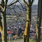 In der Frühlingssonne ist der Blick auf Schwabenheim besonders schön. Fotos: Thomas Schmidt