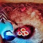 Das Kohlmeisenpaar in dem Video-Nistkasten an der Grundschule Gönnern hat tatsächlich Nachwuchs bekommen: Aus den neun Eiern sind sieben Jungvögel geschlüpft.  Foto: Sascha Valentin
