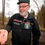 Förster Ernst Heinrich Kroh zeigt Samen von Küstentannen und Zapfenschuppen. In seinem Revier Seibertshausen gibt es mehrere anerkannte Saatgutbestände. Dort gesammelte Samen dürfen auch in anderen Wäldern ausgesät werden.  Foto: Mark Adel