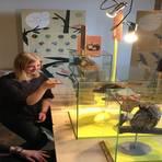 Tiere und Pflanzen aus der Region stehen im Mittelpunkt der aktuellen Ausstellung im Naturschutzhaus.Foto: Dominic Lösch  Foto: Dominic Lösch