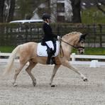 Die Wallertheimerin Paula Schiebener blieb mit Global Player AT bei den Süddeutschen Ponymeisterschaften in Darmstadt hinter ihren Erwartungen. Foto: Eva Schaab