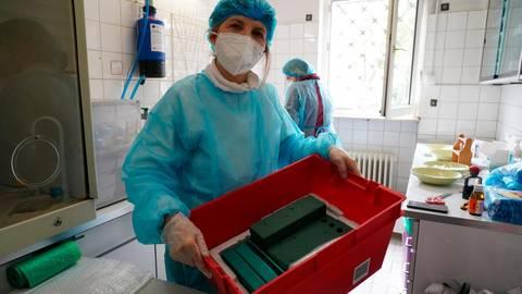 Apothekerin Afsaneh Schäfer hat die Kiste vorbereitet, um den Corona-Impfstoff an die Hausarztpraxen auszuliefern. Foto: Vollformat/Marc Schüler