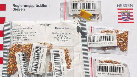 Vorsicht bei nicht bestellten Samenpäckchen im Briefkasten.   Foto: RP Gießen