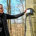Diplom-Biologin Birgit Kleinschmidt erläutert eine der Dendrometerstationen im Hüttenberger Wald.  Foto: Jenny Berns