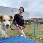 """Die Hundeschule """"Das bellende Klassenzimmer"""", hier Inhaberin Jennyfer Schmidtlein mit ihrem sechs Monate alten Border Collie """"Feliz"""", hat in Corona-Zeiten vermehrt Zulauf. Foto: Vollformat/Marc Schüler"""