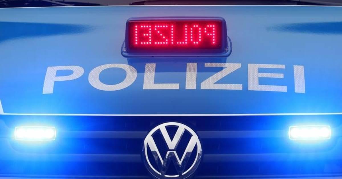 """LKW fährt auf der A65 bei Edenkoben einen """"Tiger"""" an - Allgemeine Zeitung"""